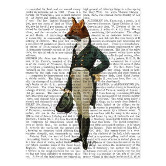 Dandy Fox Full 2 Postcard
