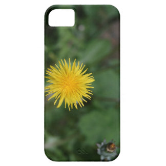 dandy lion case for the iPhone 5