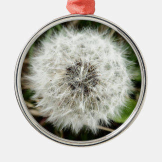 Dandy Silver-Colored Round Decoration