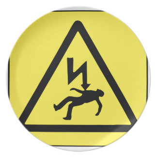 Danger Electricity Plate