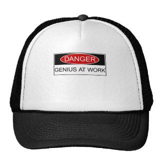 Danger Genius at Work Hats