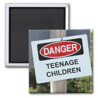 Danger Sign Teenage Children Magnet