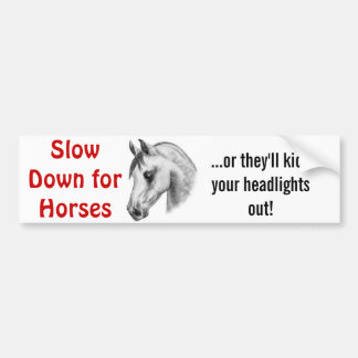 dangerous horses bumper sticker