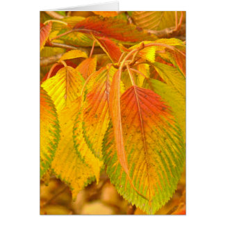 """""""DANGLING LEAVES OF YELLOW, ORANGE AND GREEN"""" NOTE CARD"""
