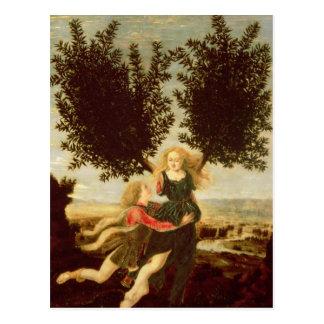 Daphne and Apollo, c.1470-80 Postcard