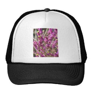 Daphne Bloom Hat