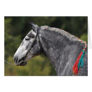 Dapple grey Percheron horse birthday Card