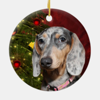 Dappled Dachshund Christmas Christmas Ornament