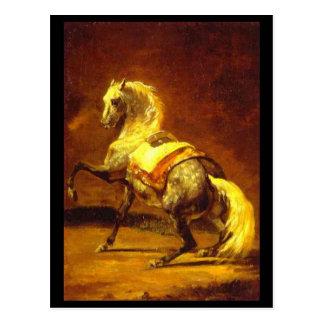 DAPPLED GREY HORSE POST CARD