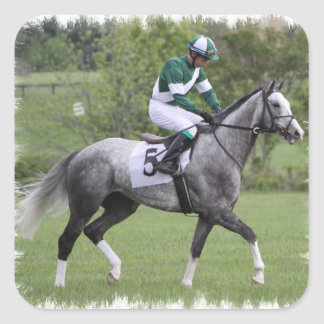 Dappled Grey Race Horse Stickers