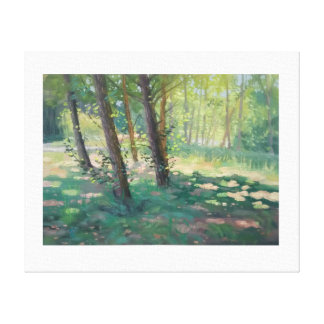 Dappled light in Southern France Canvas Print