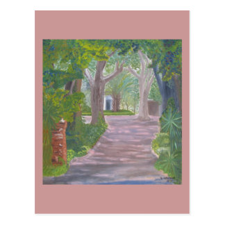 Dappled Shade Drive Postcard