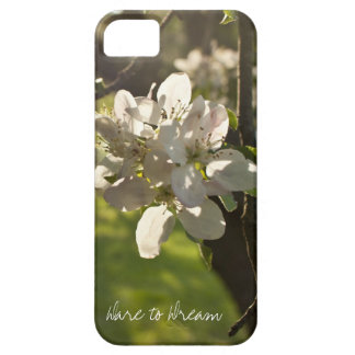 Dare to Dream iPhone 5 Cases