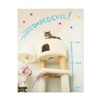 Daredevil Cat Canvas Print