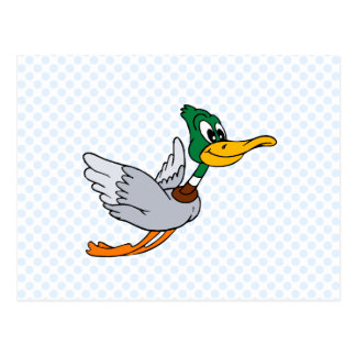 Darien Duck Postcard