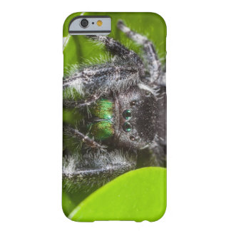 Daring Jumping Spider Barely There iPhone 6 Case