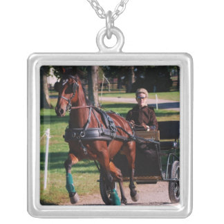 dark bay horse at national drive square pendant necklace