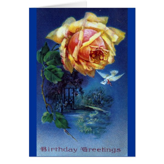 Dark Blue Background Rose and Dove Postcard