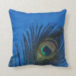 Dark Blue Peacock Feather Still Life