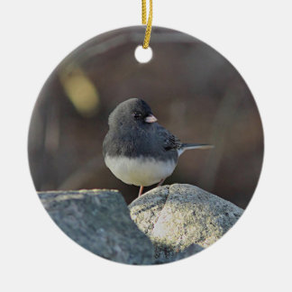 Dark-eyed junco christmas ornament