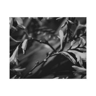 Dark Flowers Canvas Print