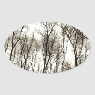Dark forest oval sticker