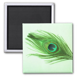 Dark Green Peacock Feather on Green Fridge Magnet