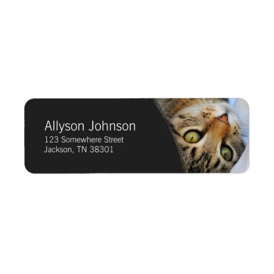 Dark Grey & Tabby Cat Address Labels