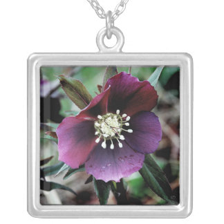 Dark Hellebore Silver Necklace
