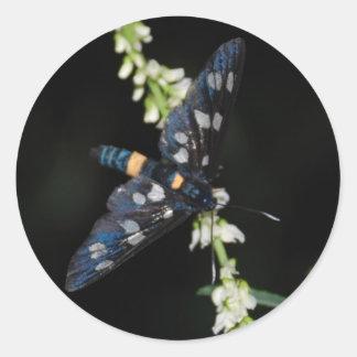 dark moth round sticker