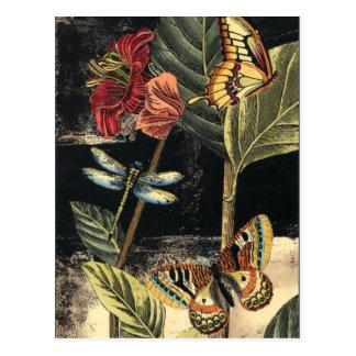 Dark Nature Scene by Vision Studio Postcard