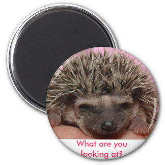 dark pink 3, What are you looking at? 6 Cm Round Magnet