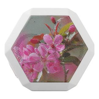 Dark Pink Cherry Blossoms White Boombot Rex Bluetooth Speaker