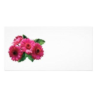 Dark Pink Gerbera Daisies Customized Photo Card