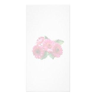 Dark Pink Gerbera Daisies Photo Greeting Card