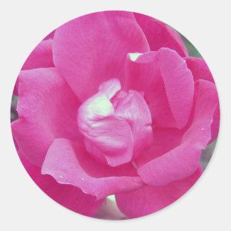 Dark Pink Rose Photo Classic Round Sticker
