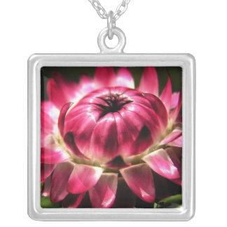 Dark Pink Strawflower Necklace