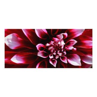 dark red dahlia rack card design