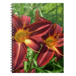 Dark red lilies notebook