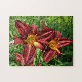 Dark red lilies photo puzzle