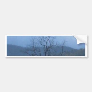dark tree stormy skys bumper sticker