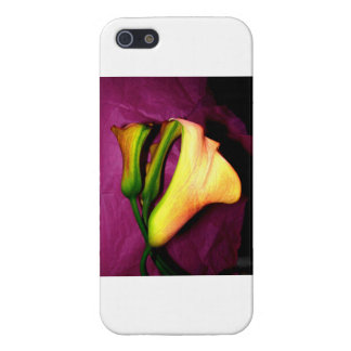 Dark yellow calla lily iPhone Case iPhone 5 Cover