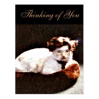 Darling Cat_ Postcards