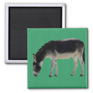 Darling Donkey on Green - Animal Lovers Square Magnet