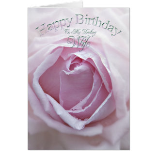Darling Wife, a Birthday card with a pink rose