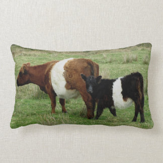 Darmoor Belted Galloway Cow And Calf Lumbar Cushion