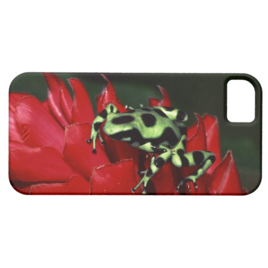Dart frog 2 barely there iPhone 5 case