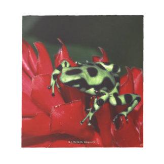 Dart frog 2 notepad