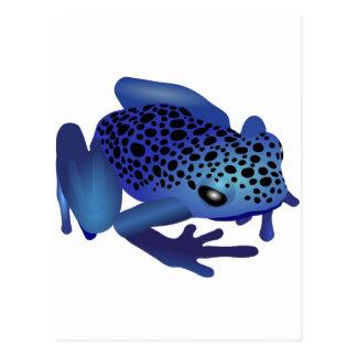 Dart Frog Post Card