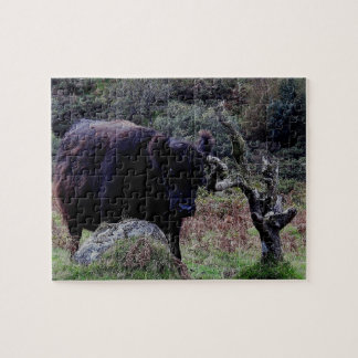 Dartmoor Black Galloway Scratching On Dead Tree Jigsaw Puzzle